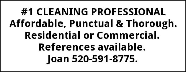 #1 Cleaning Professional