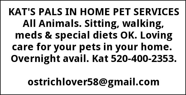 Loving Care for Your Pets in Your Home